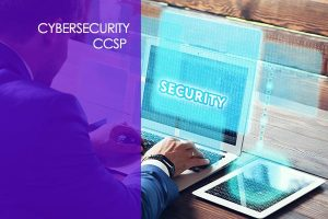 Netcom Online Learning Certified Cloud Security Professional (CCSP)